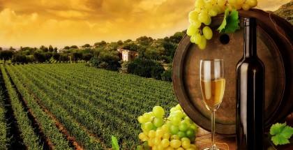 wine-beautiful-bottle-image