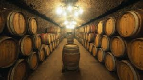 Nova italijanska vina u ponudi