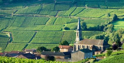 Burgundy France 1