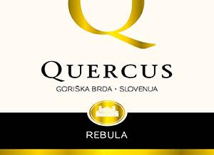 14_Quercus_Osnutek_nov_logo