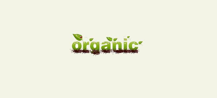 Organska vina: Harmonija ukusa i zdravlja