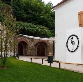 Radgonske Gorice – Magični svet penušavih vina